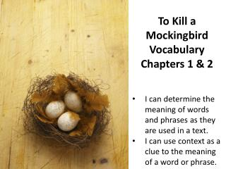 To Kill a  Mockingbird  Vocabulary Chapters 1 & 2