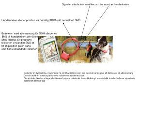 Signaler sänds från satelliter och tas emot av hundenheten