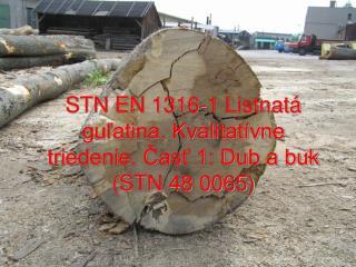 STN EN 1316-1 Listnatá guľatina. Kvalitatívne triedenie. Časť 1: Dub a buk (STN 48 0065)