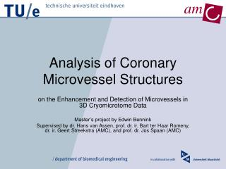 Analysis of Coronary Microvessel Structures