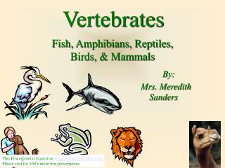 Fish, Amphibians, Reptiles,  Birds, & Mammals