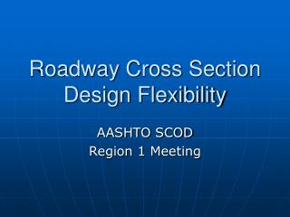 Roadway Cross Section Design Flexibility