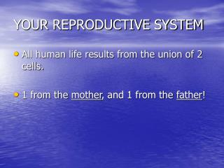 YOUR REPRODUCTIVE SYSTEM