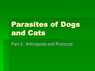 Parasites of Dogs and Cats