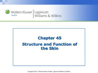 Chapter 45 Structure and Function of  the Skin