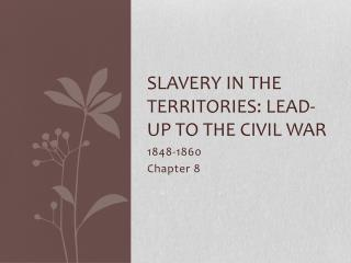Slavery in the territories: Lead-up to the civil war