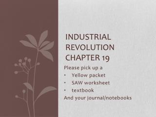 Industrial Revolution Chapter 19