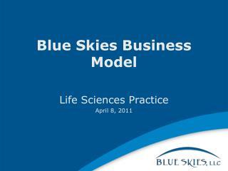 Blue Skies Business Model