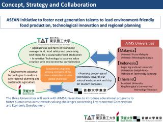 Concept, Strategy and Collaboration