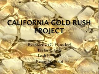 California Gold Rush Project