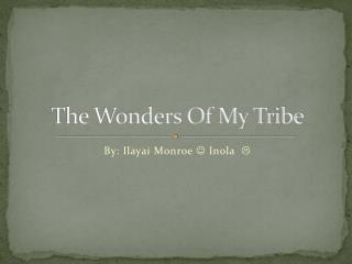 The Wonders Of My Tribe