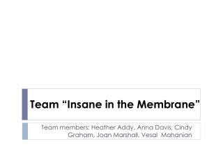 "Team ""Insane in the Membrane"""