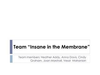 "Team ""Insane in the Membrane"""