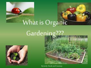 What is Organic Gardening???