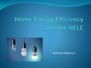 Home Energy Efficiency  and the NELC