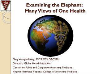 Examining the Elephant:  Many Views of One Health