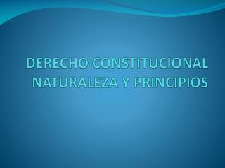 DERECHO CONSTITUCIONAL NATURALEZA Y PRINCIPIOS
