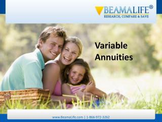 Variable Annuities
