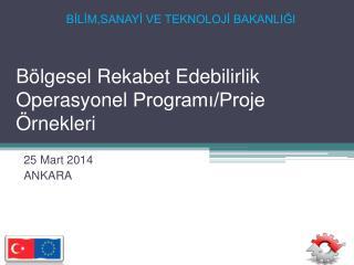Bölgesel Rekabet Edebilirlik  Operasyonel  Programı/Proje Örnekleri