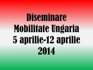 Diseminare Mobilitate Ungaria 5 aprilie-12  aprilie 2014