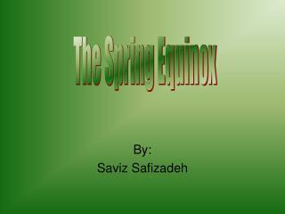 By: Saviz Safizadeh