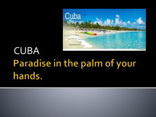 Paradise in the palm of your hands.