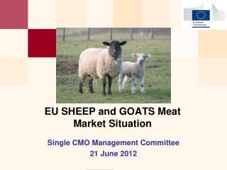 EU SHEEP and GOATS Meat  Market  Situation