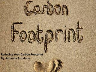 Reducing Your Carbon Footprint By: Amanda Anzalone