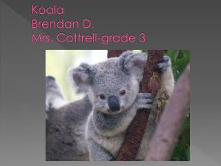 Koala Brendan  D. Mrs . Cottrell-grade  3