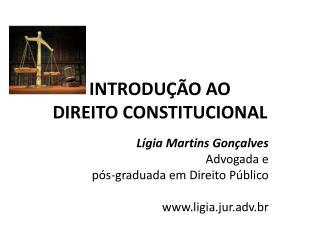 INTRODUÇÃO AO  DIREITO CONSTITUCIONAL