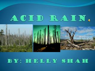 ACID RAIN By: Helly Shah