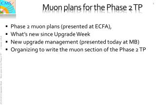 Muon plans for the Phase 2 TP