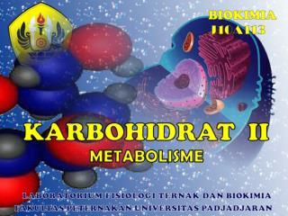 Pengantar Metabolisme Karbohidrat   (KH)