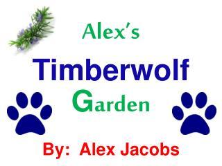 Alex�s  Timberwolf  G arden