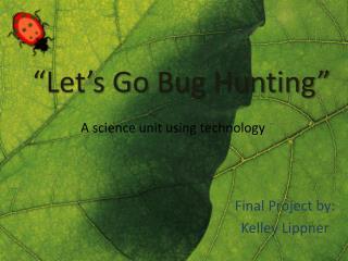 """Let's Go Bug Hunting"""