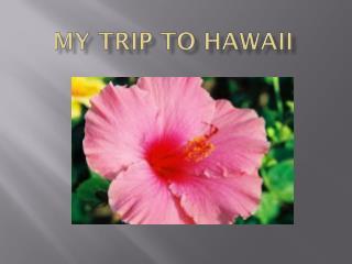 My Trip To Hawaii