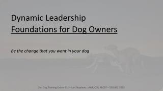 Dynamic Leadership Foundations for Dog Owners