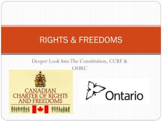 RIGHTS & FREEDOMS