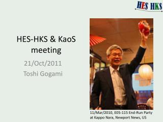 HES-HKS &  KaoS  meeting