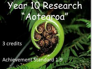 """Year 10 Research """" Aotearoa """""""