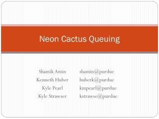 Neon Cactus Queuing
