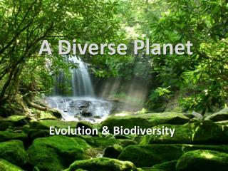 A Diverse Planet