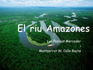 El riu Amazones