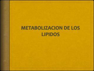 METABOLIZACION DE LOS LIPIDOS