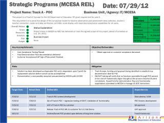 Strategic Programs  (MCESA REIL)