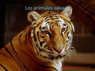 Los animales 2