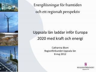 Energilösningar för framtiden  och  ett regionalt perspektiv