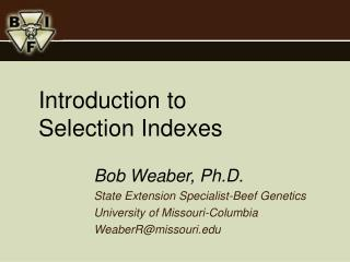 Introduction to Selection Indexes