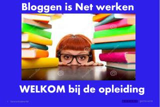 Bloggen  is Net werken