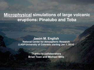 Microphysical  simulations  of  large  volcanic eruptions: Pinatubo and Toba